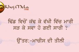 Punjabi Bujartan